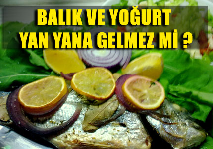 Balık Ve Yoğurt Zehirler Mi Işte Cevabı Haber Kıbrıs